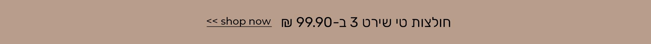 חולצות טי שירט 4 ב99.90