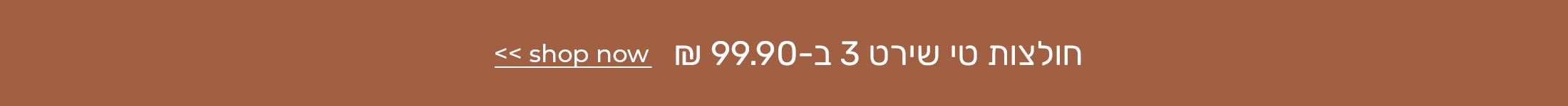 חולצות טי שירט 3 ב-99.90
